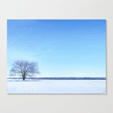 Shades of Winter Canvas Print