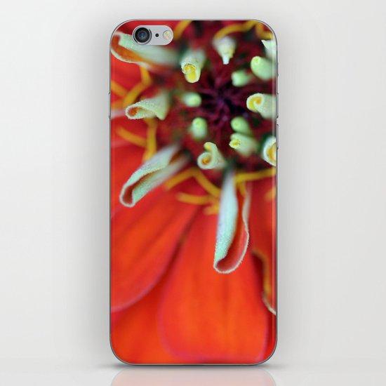 Brand New Day iPhone & iPod Skin