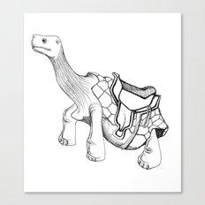 Tortoise Ride Anyone?! Canvas Print