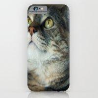 Kitty Cat iPhone 6 Slim Case