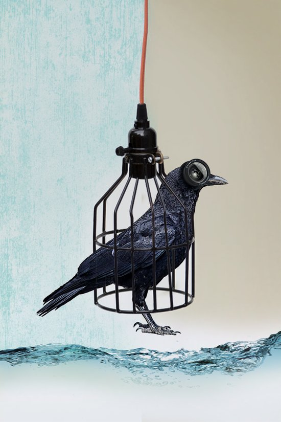 bird in the wire Art Print