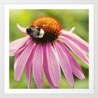 Bee Love Art Print