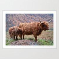 Highlander - III Art Print