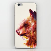 Grizzly  iPhone & iPod Skin