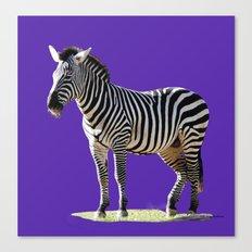 Designer Zebra Canvas Print