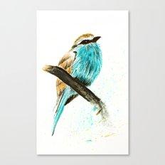 Watercolor bird Canvas Print