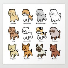 The Various Types Of Cat Art Print