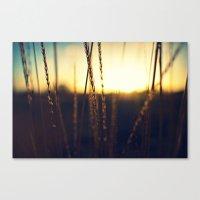 Prairie Sun Canvas Print