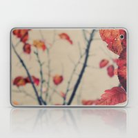 Contrasted Fall Laptop & iPad Skin