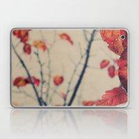 Contrasted Fall Laptop & iPad Skin