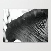 Mushroom Gills I Canvas Print