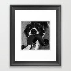 Border Collie Mustache Framed Art Print