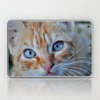Cat eyes Laptop & iPad Skin