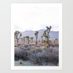 Joshua Tree Diptych [Right Side] Art Print