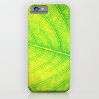 iPhone & iPod Case featuring nature by Starr Shaver