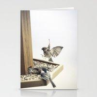 Tom Feiler Sparrows Stationery Cards