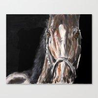 Equus Canvas Print