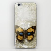 Vintage Butterfly 2 iPhone & iPod Skin