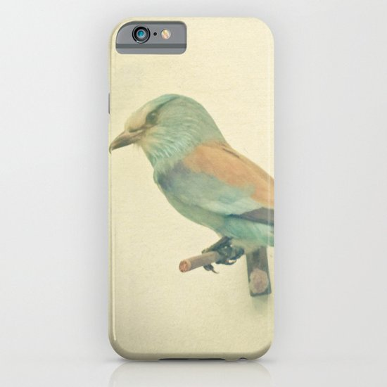 Bird Study #2 iPhone & iPod Case