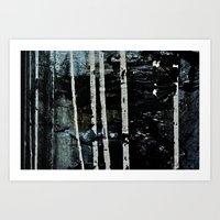 Birch Forrest At Night Art Print