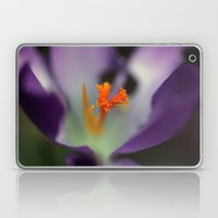 Crocus Heart Laptop & iPad Skin