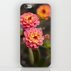 flowers. iPhone & iPod Skin