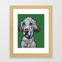 Ollie The English Setter Framed Art Print