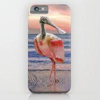 Beachcombing iPhone 6 Slim Case