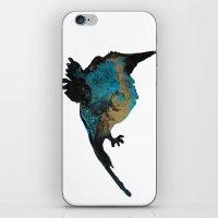 B E I J A F L O R  iPhone & iPod Skin