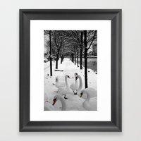 Swans In The Snow Framed Art Print