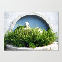 Overgrown Ferns Canvas Print