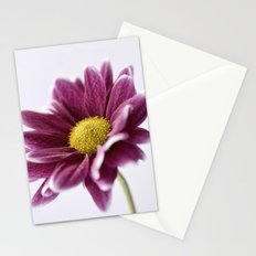 Colour Impact Stationery Cards