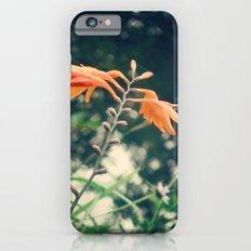 udabarriko lorie Slim Case iPhone 6s