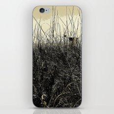 Desperation iPhone & iPod Skin