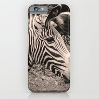 iPhone & iPod Case featuring Zebra by Leah M. Gunther Photography & Design