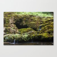 The Staburags cliff of Rauna Canvas Print