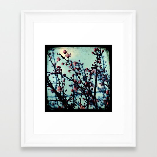 Spring Blossoms - Through The Viewfinder (TTV) Framed Art Print