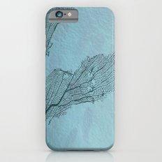 The screen iPhone 6 Slim Case