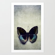 Vintage Butterfly 4 Art Print