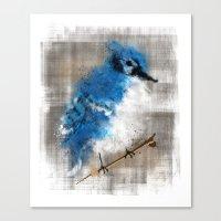 A Blue Jay Today Canvas Print