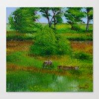 Horse and pasture, Hobultova, Ukraine Canvas Print