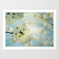 White Apple Blossoms And… Art Print