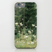 iPhone & iPod Case featuring Wildflowers 1 by Felicity Crew