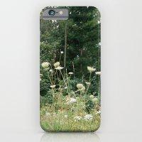 Wildflowers 1 iPhone 6 Slim Case
