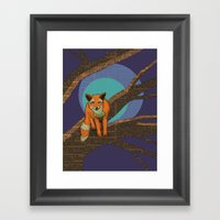 Fox At Night Framed Art Print