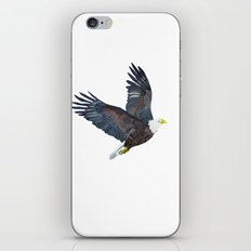 Bald eagle in flight iPhone & iPod Skin