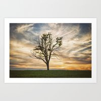 Kentucky Sunset Art Print