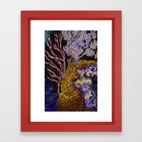 Coral Dreams Framed Art Print