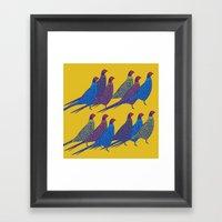 Pheasants Framed Art Print