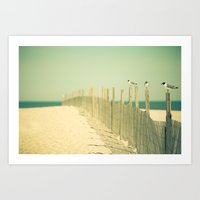 Into the Distance Art Print